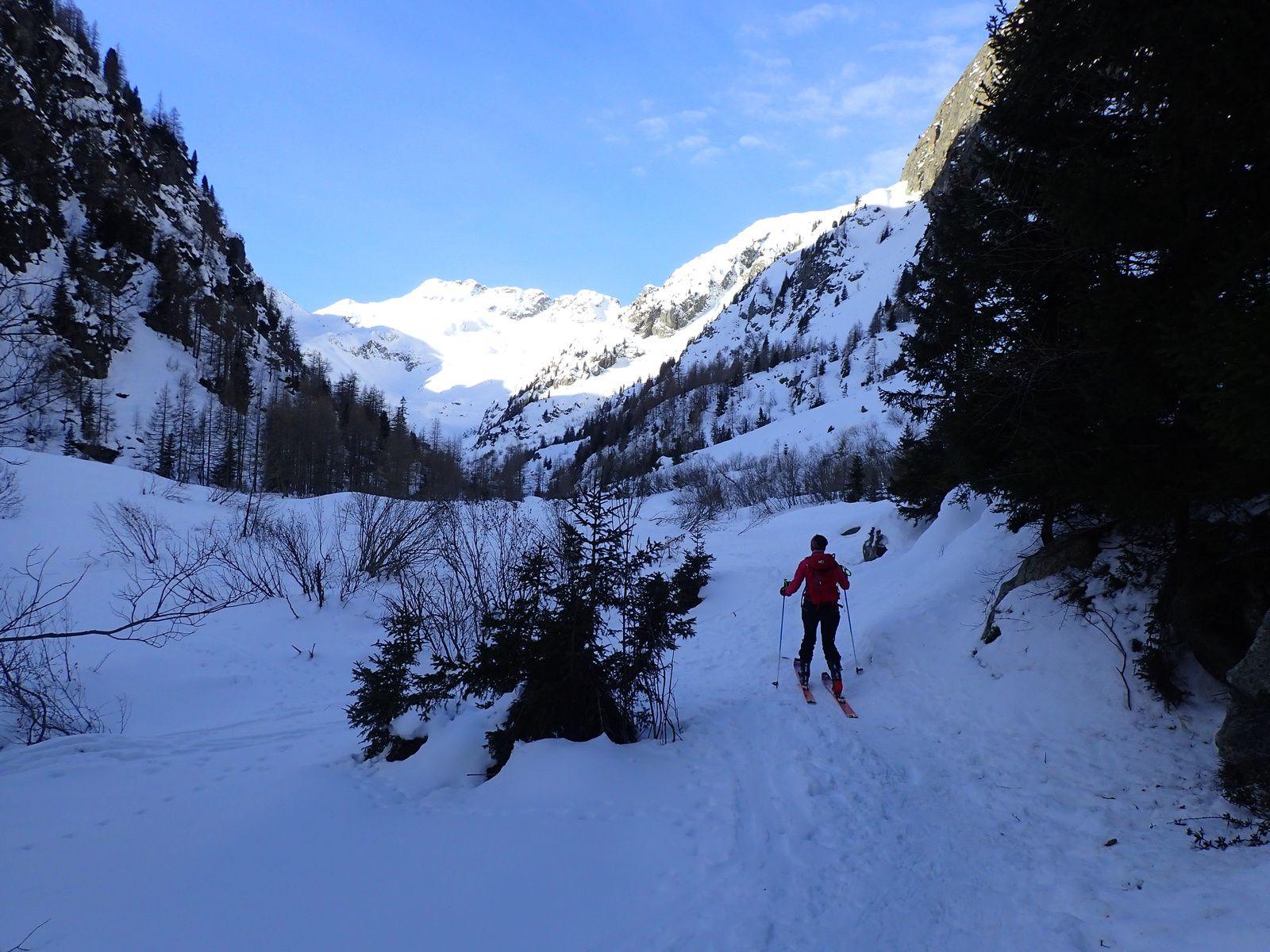 Pointe Alphonse Favre: Glacier du Mort depuis le Buet 1/2
