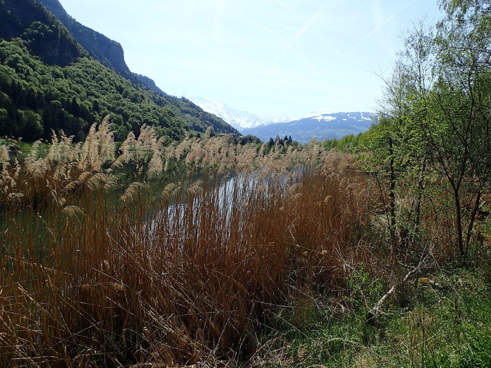 Cascade d'Arpenaz: Boucle par le Lac des Ilettes 1/2