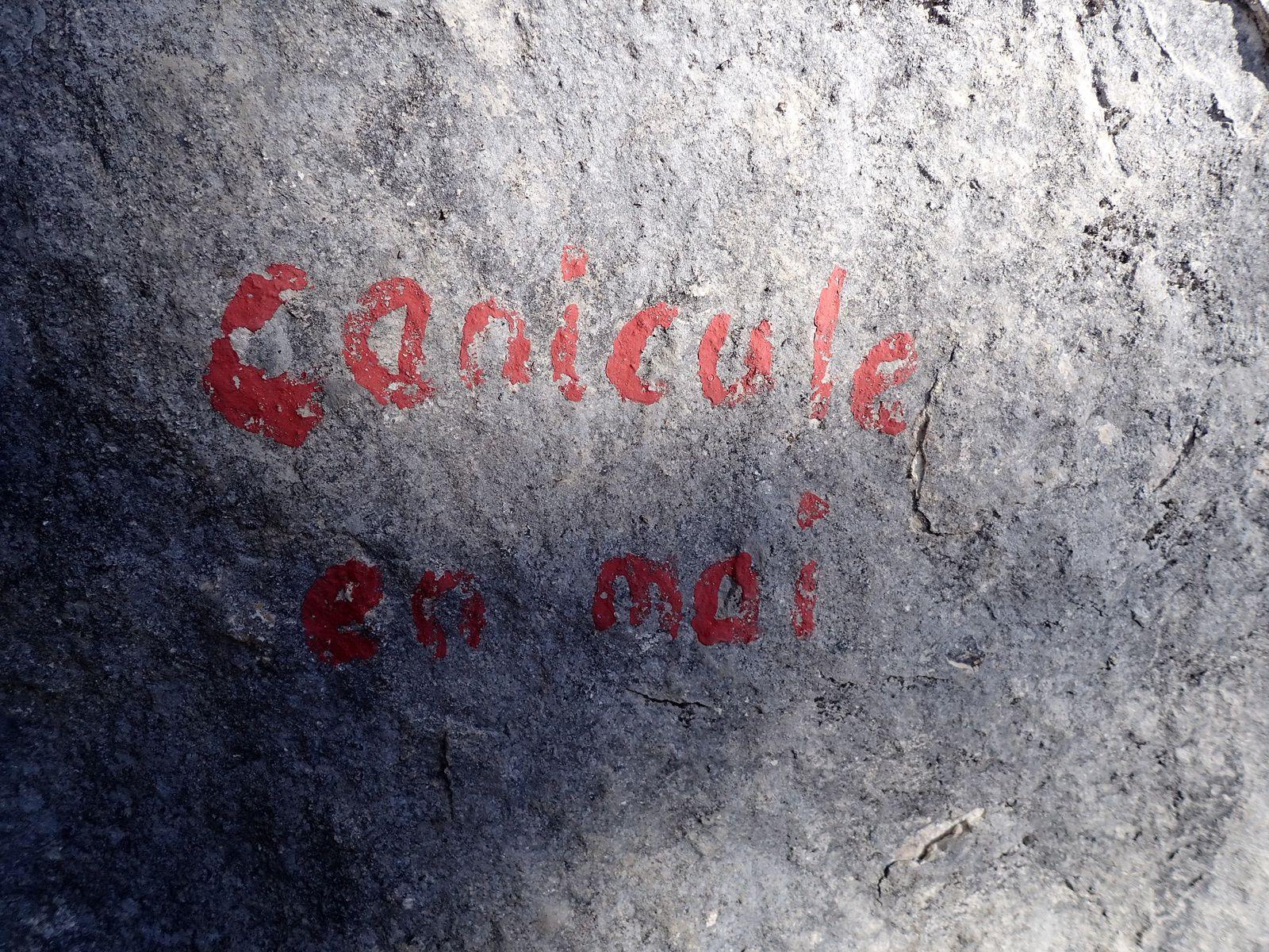 Rocher du Béard (secteur Beau comme un rêve): Les couennes