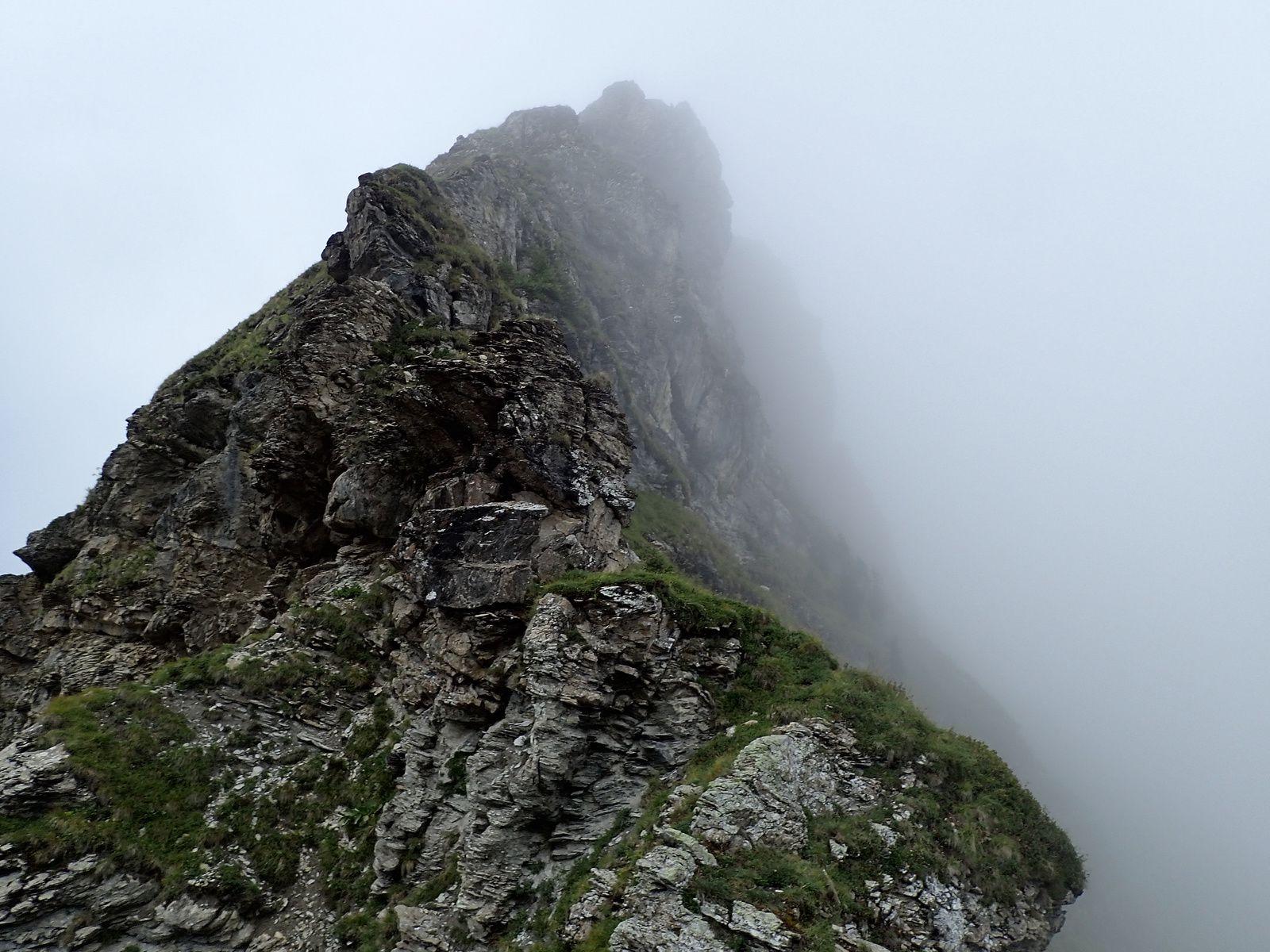 Pointe de Ressachaux : Arête des Tranchants 1/2