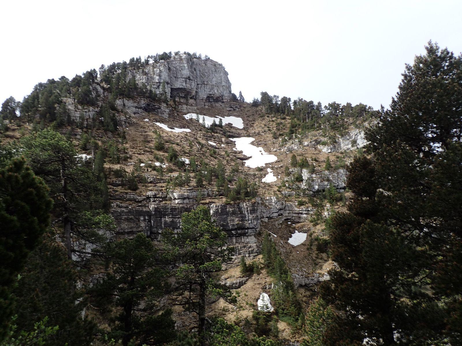 La Tête du Parmelan : Boucle Bois brûlé > Plateau > Grotte de l'Enfer 2/3