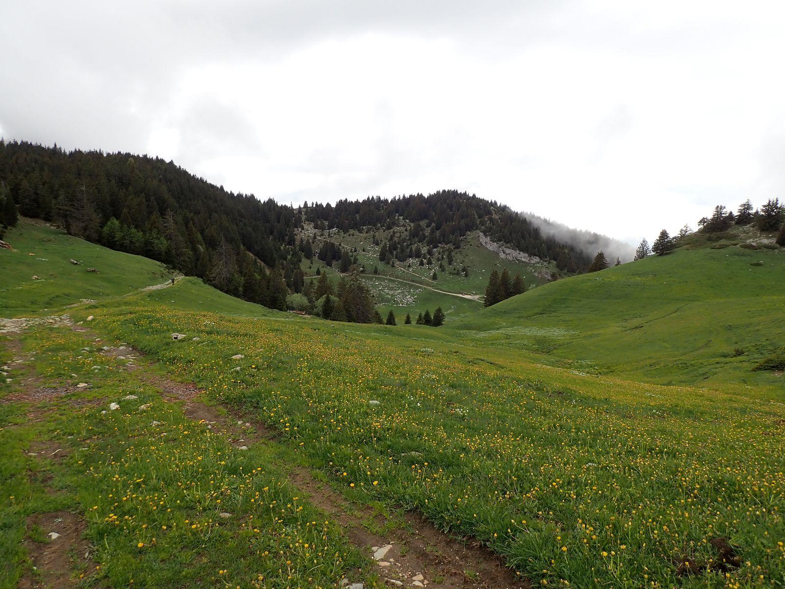 La Tête du Parmelan : Boucle Bois brûlé > Plateau > Grotte de l'Enfer 3/3