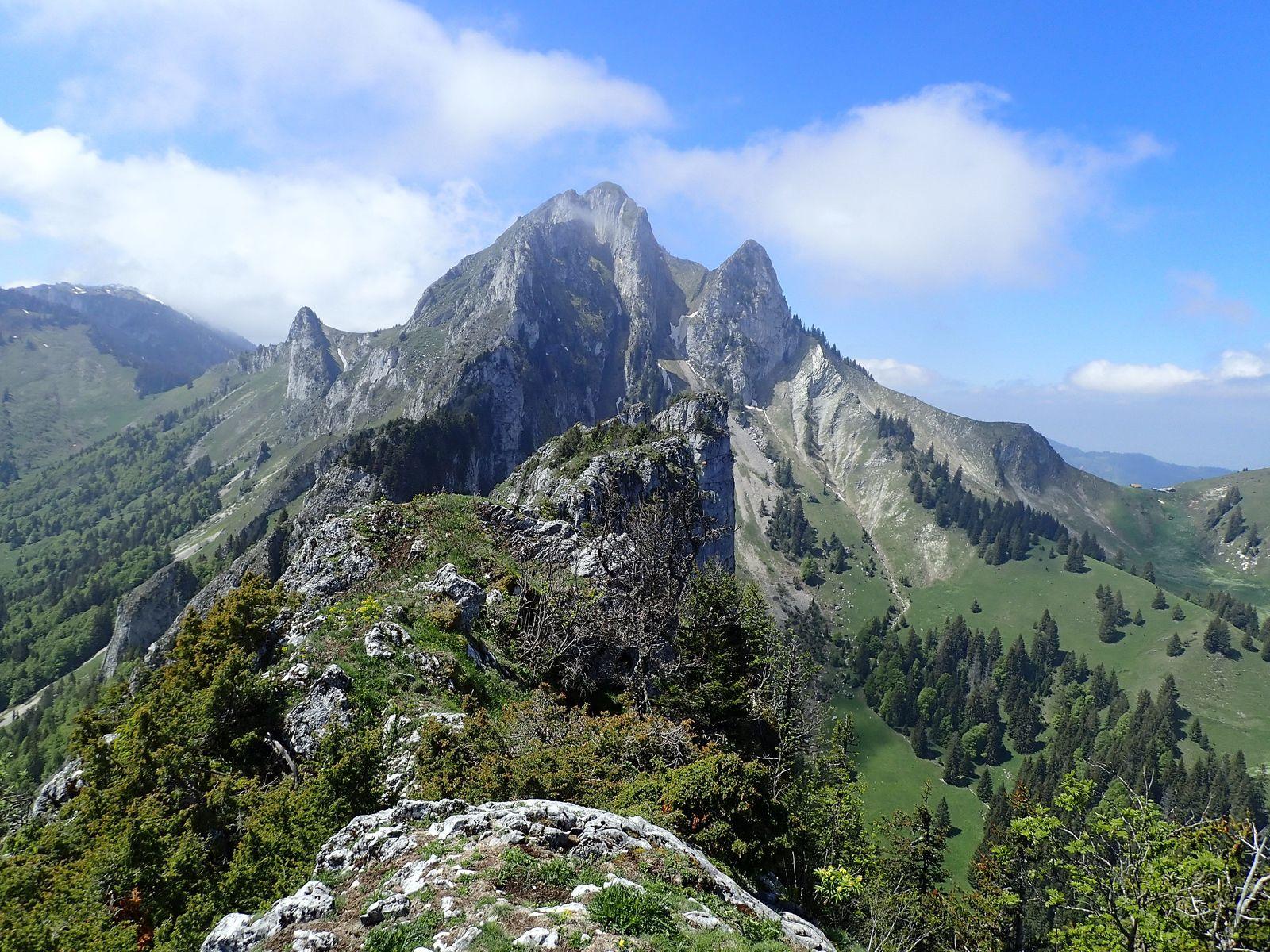 Rochers du Jotty (Mévone, Tête Blanche) + Mont Billiat : Depuis les Chalets de la Buchille 2/2