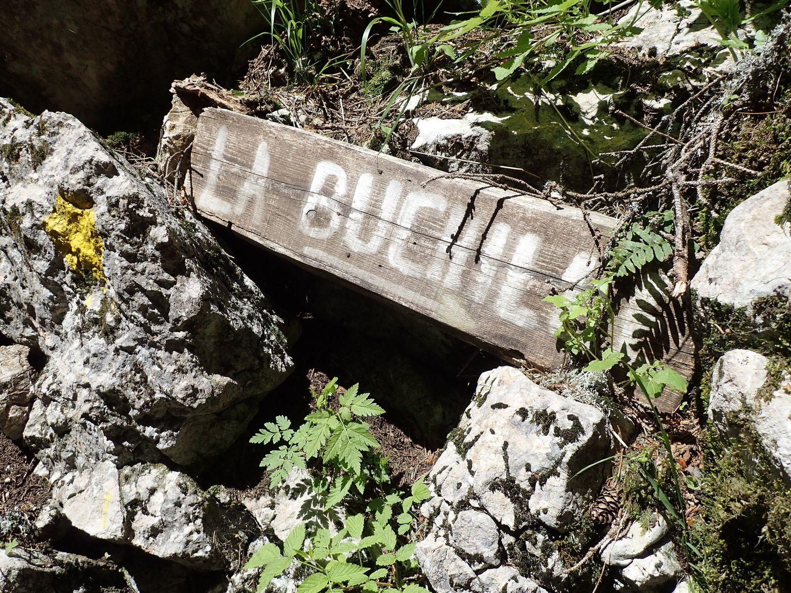 Pointe d'Ireuse : Depuis les Chalets de la Buchille 2/2