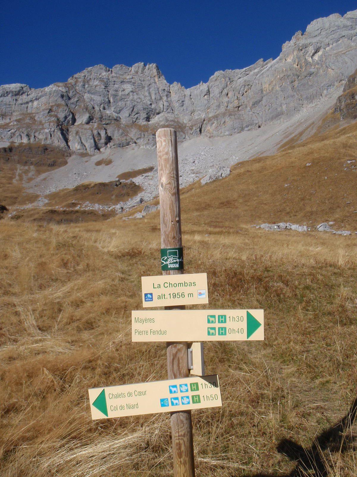Les Quatre Têtes : Tour et sommet
