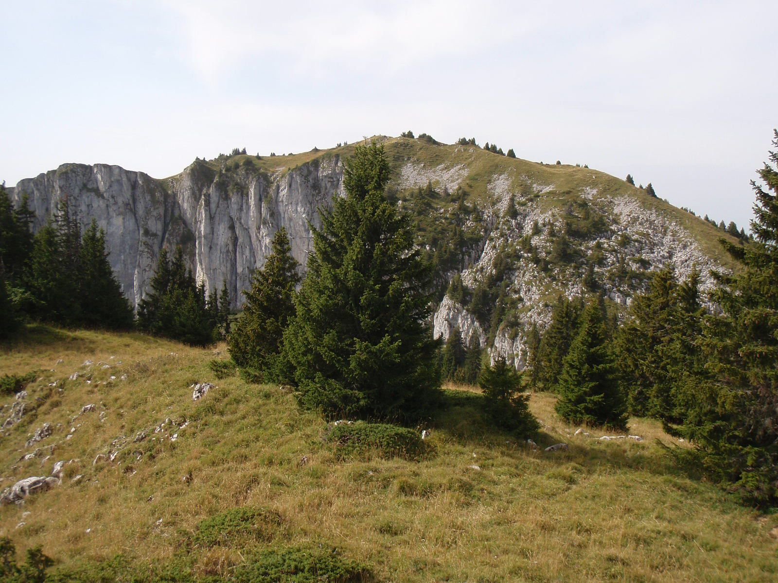 Mont Billiat : Traversée Mont Billiat > Pointe d'Ireuse