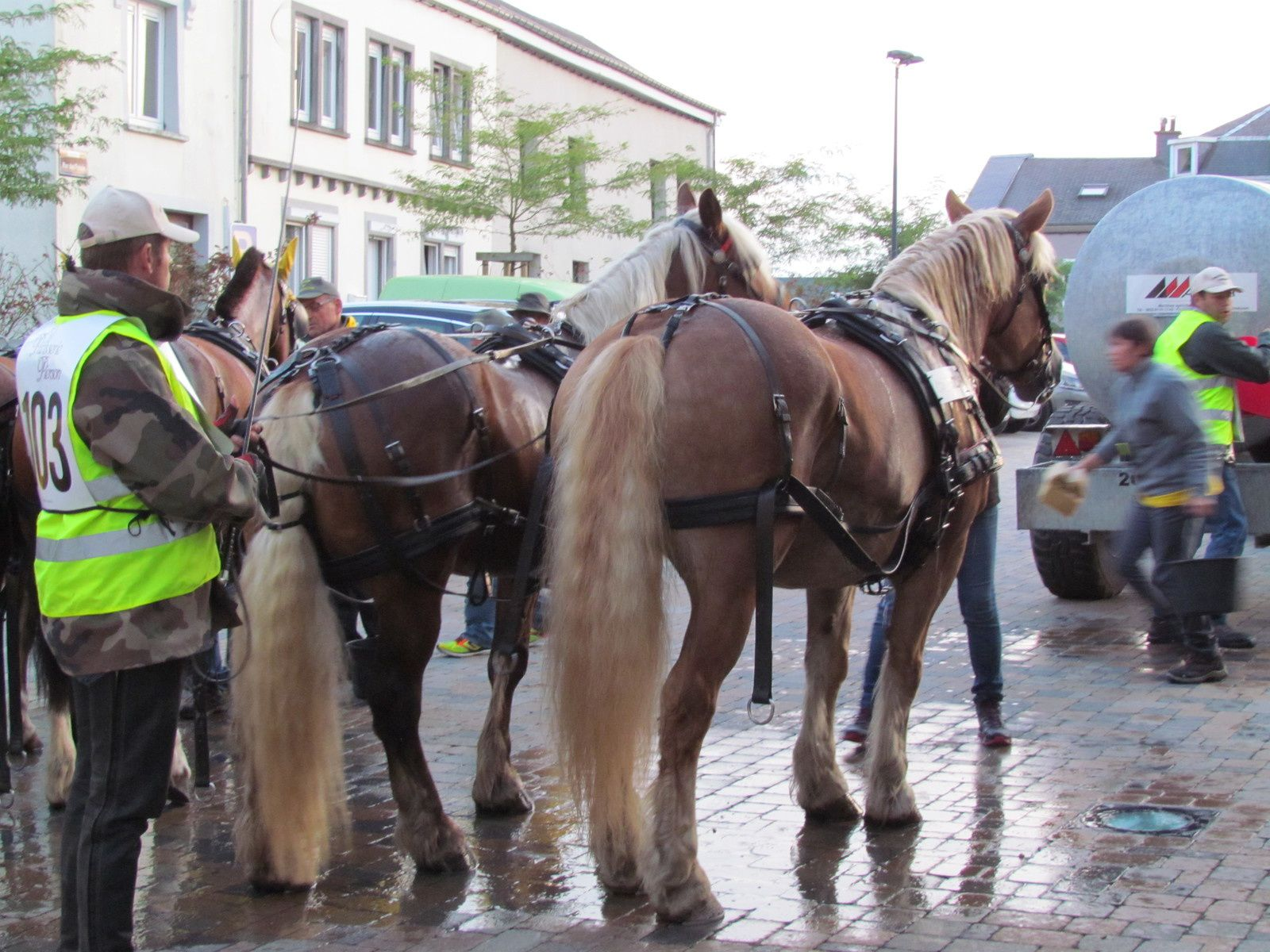 La route du Luxembourg belge