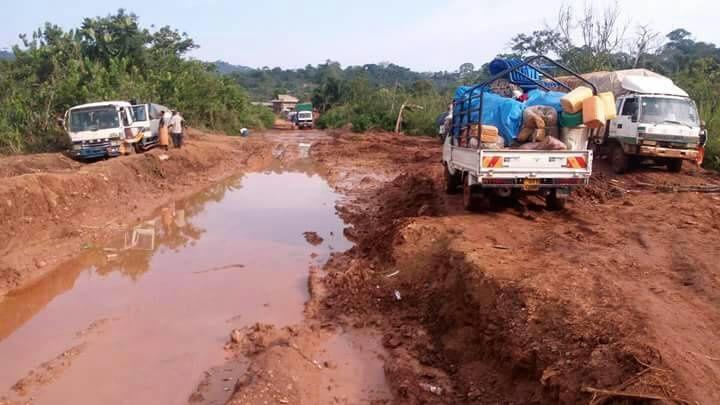 Quelque part en Ituri (RDC°
