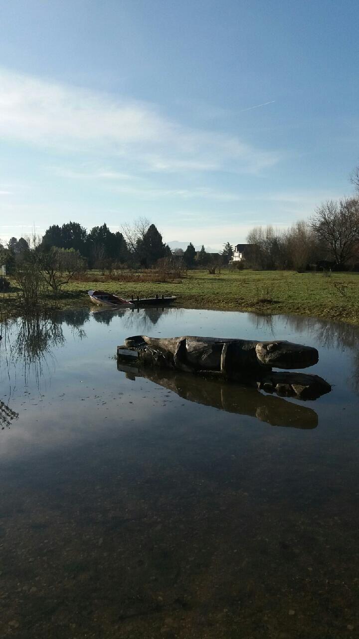 On nous avait dit que cet endroit du jardin était une zone humide... Pour Cro-cro le triton et la barque , c'est une première ! (crédit photos BBP/MG)