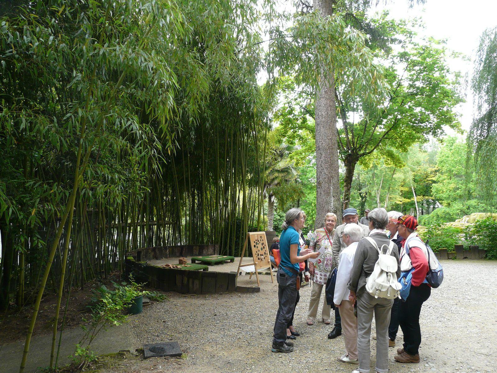 déambulation par des sentiers sinueux dans un décor de bassins, de cascades, de plantes, d'arbres et arbustes d'une très grande variété