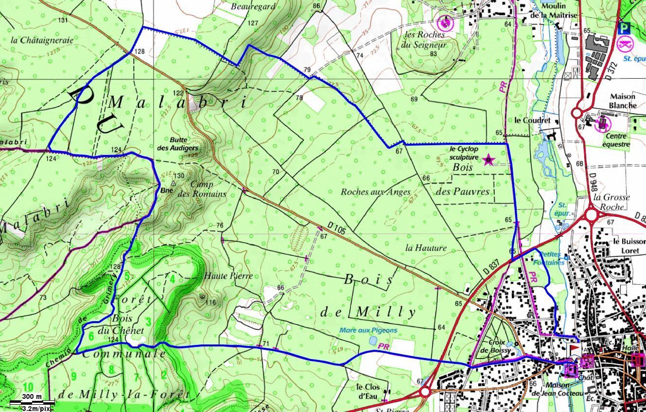 Le Bois de Milly - boucle de 12km