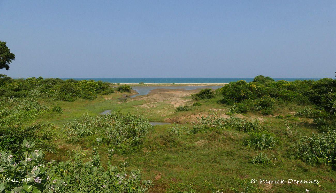 Sri Lanka - Yala NP