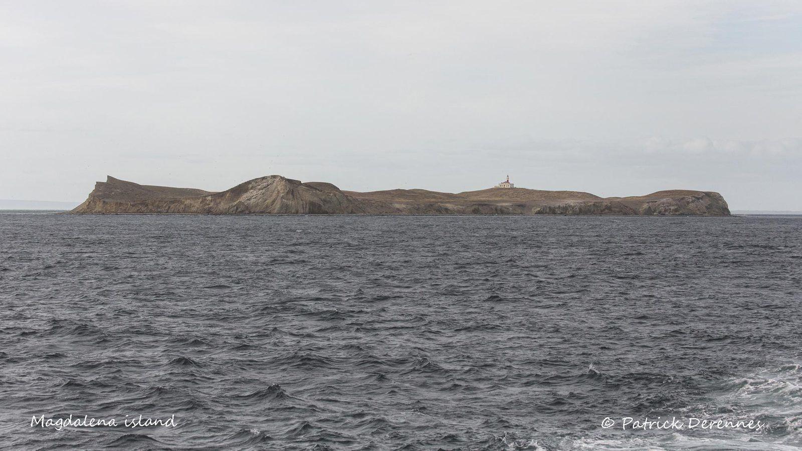 magdalena island - 1
