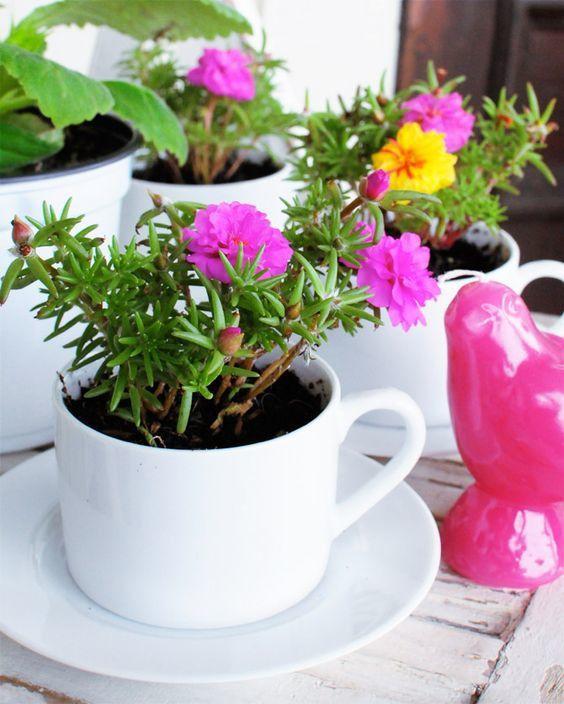 6 Pots de fleurs en objets recyclés
