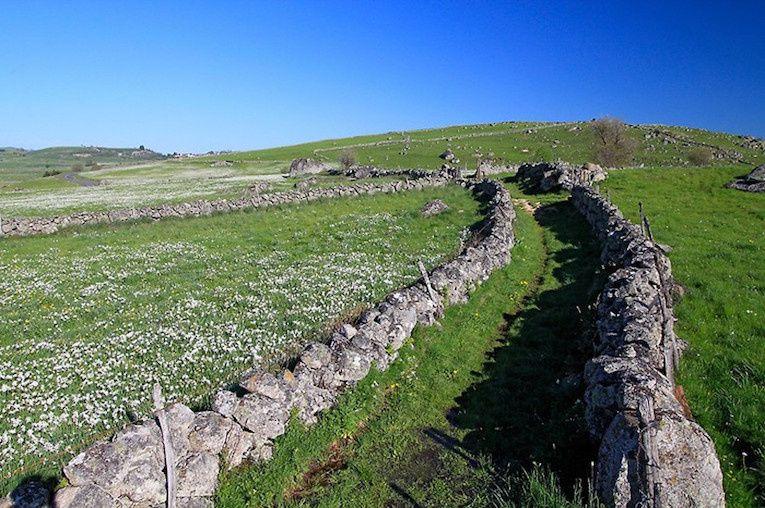 Olivier et Karine vous accueillent avec plaisir sur le chemin de Saint Jacques de Compostelle, pour une halte entre les hauts plateaux de la Margeride et de l'Aubrac