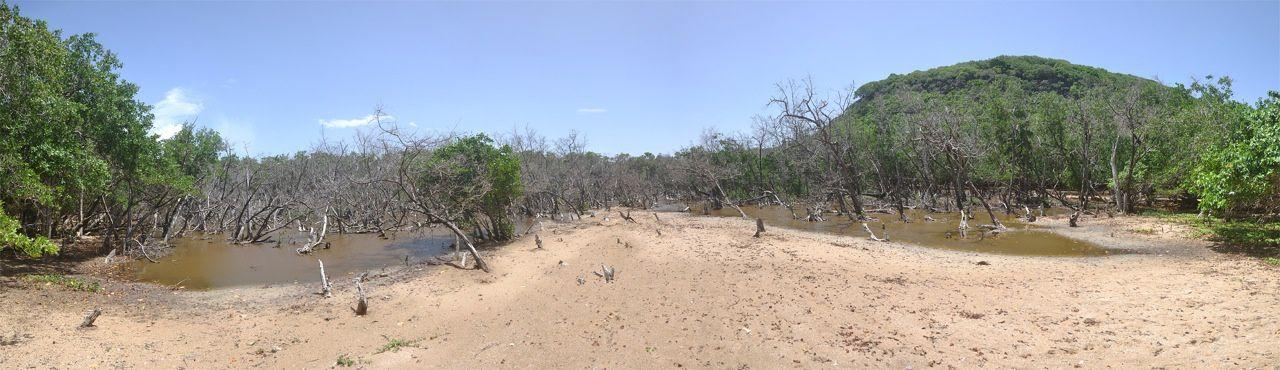 Lagune de l'îlet Kahouanne