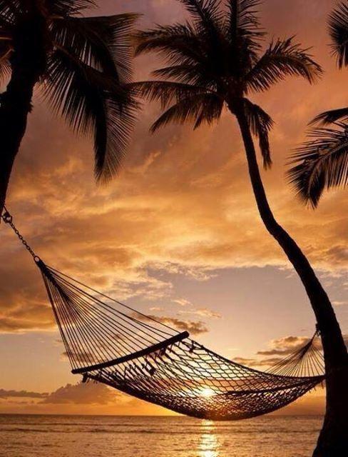 Un peu de rêve - Plage - Hamac - Coucher de soleil - Pictures Free