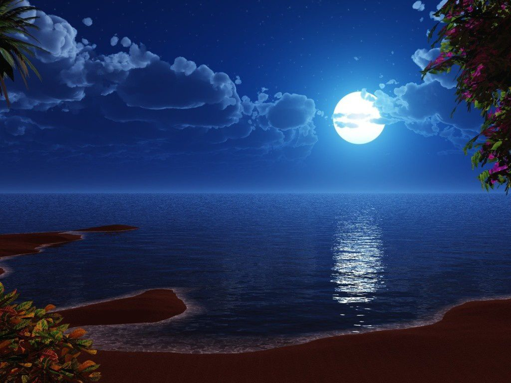 Paysage - Nuit - Lune - Wallpapers