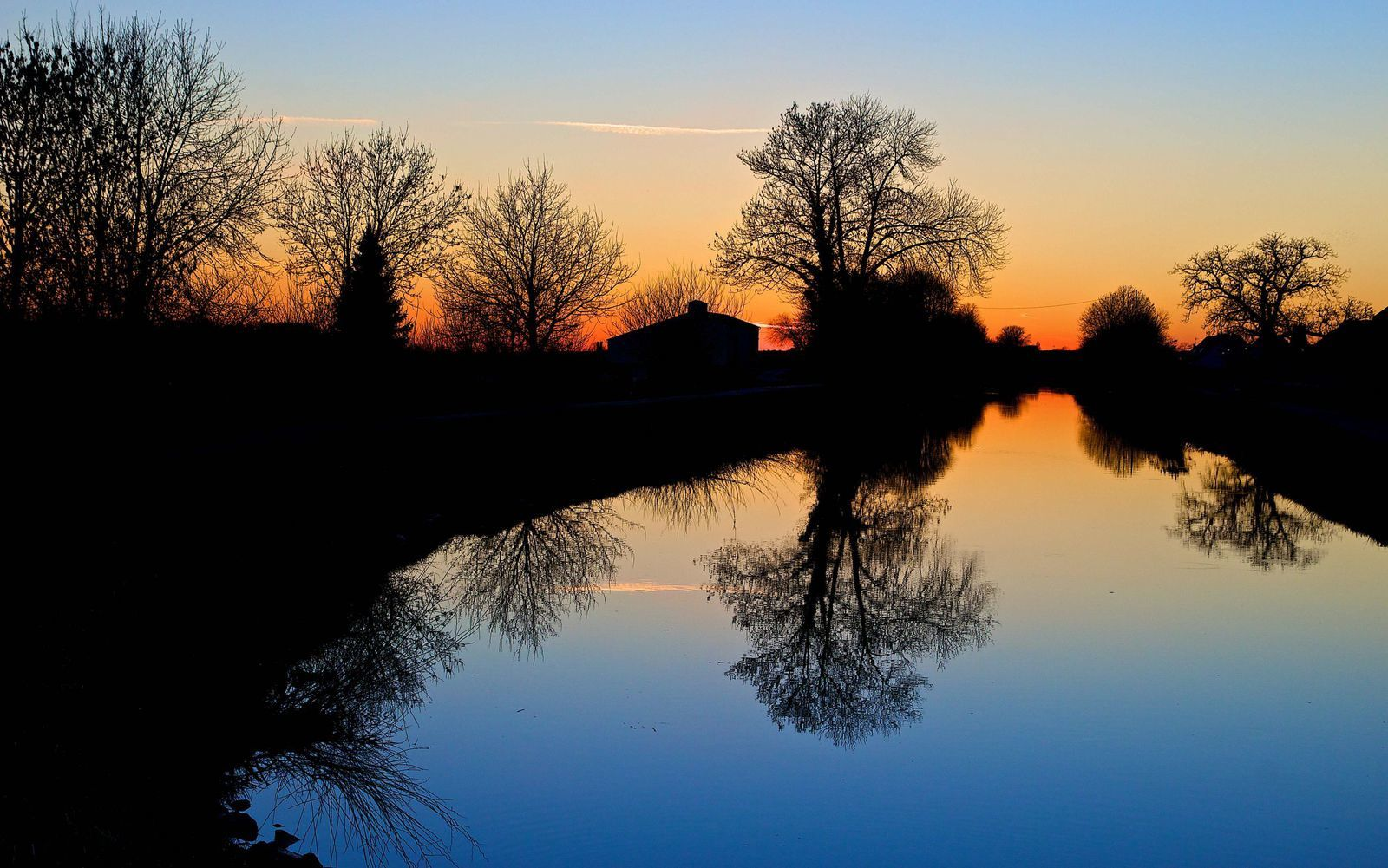 Nature - Paysage - Arbres - Pictures - Free