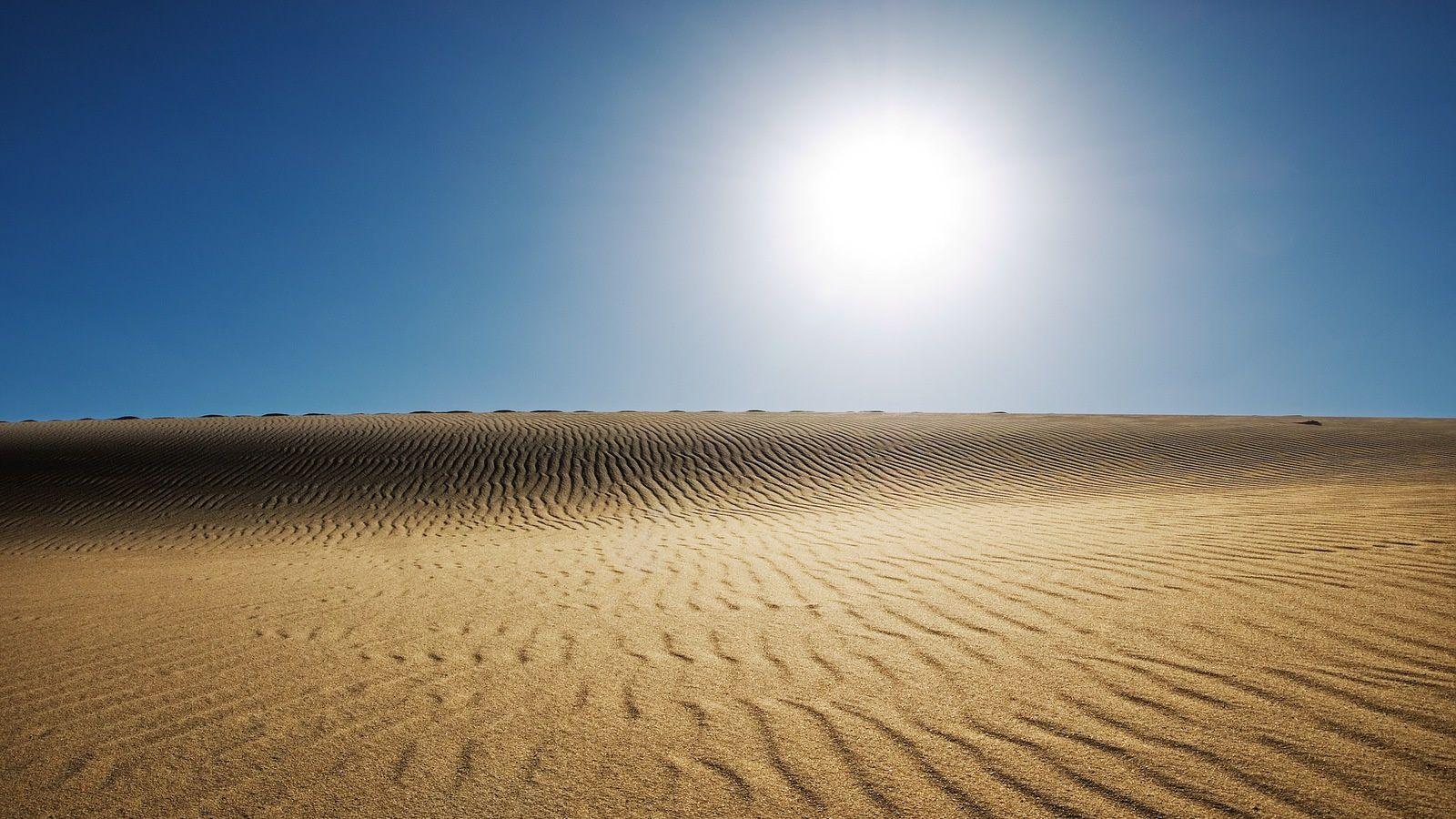 Dunes - Désert - Wallpapers - HD