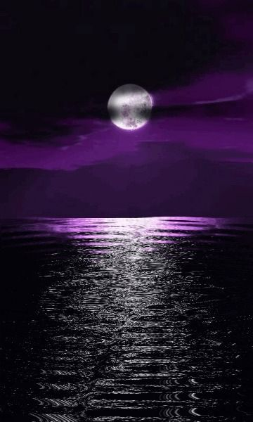 Nuit - Lune - Flots - Picture - Free