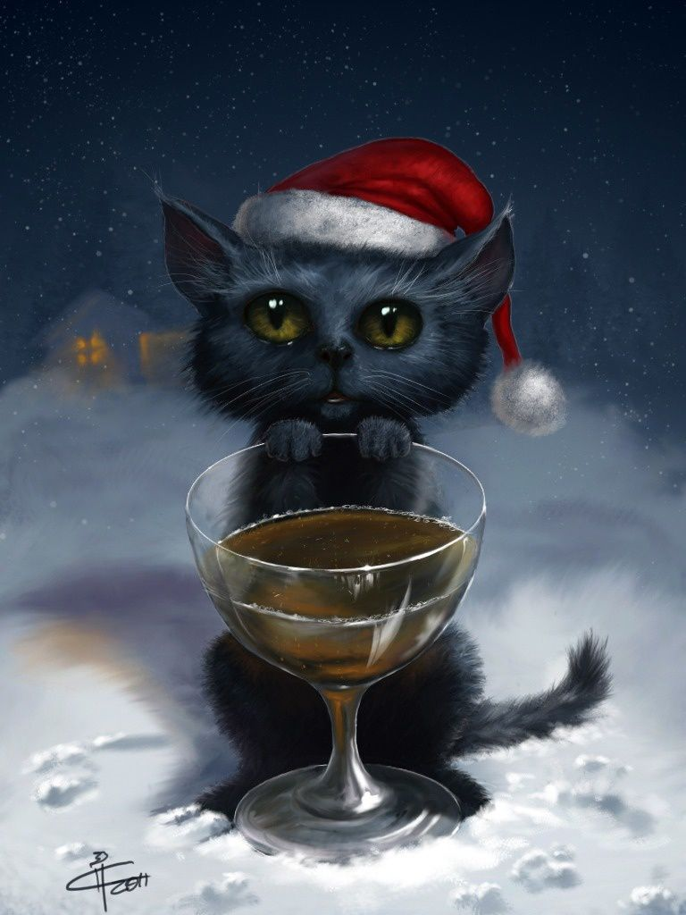 Chat - Noël 2015 - Picture - Free
