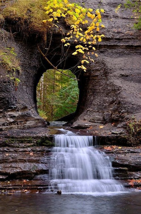 Cascade - Nature - Picture - Free