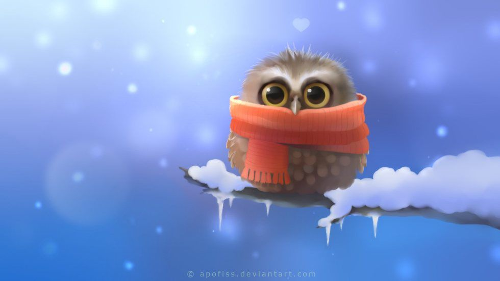 Chouette - Froid - Hiver - Wallpaper - Free