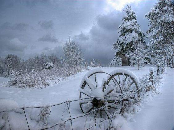 Hiver - Paysage - Neige - Picture - Free