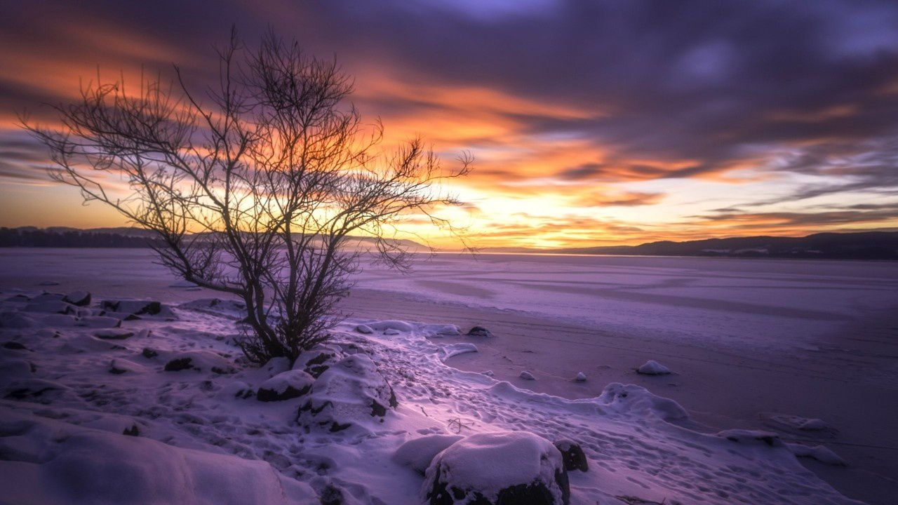 Nature - Hiver - Neige - Paysage - Wallpaper - Free