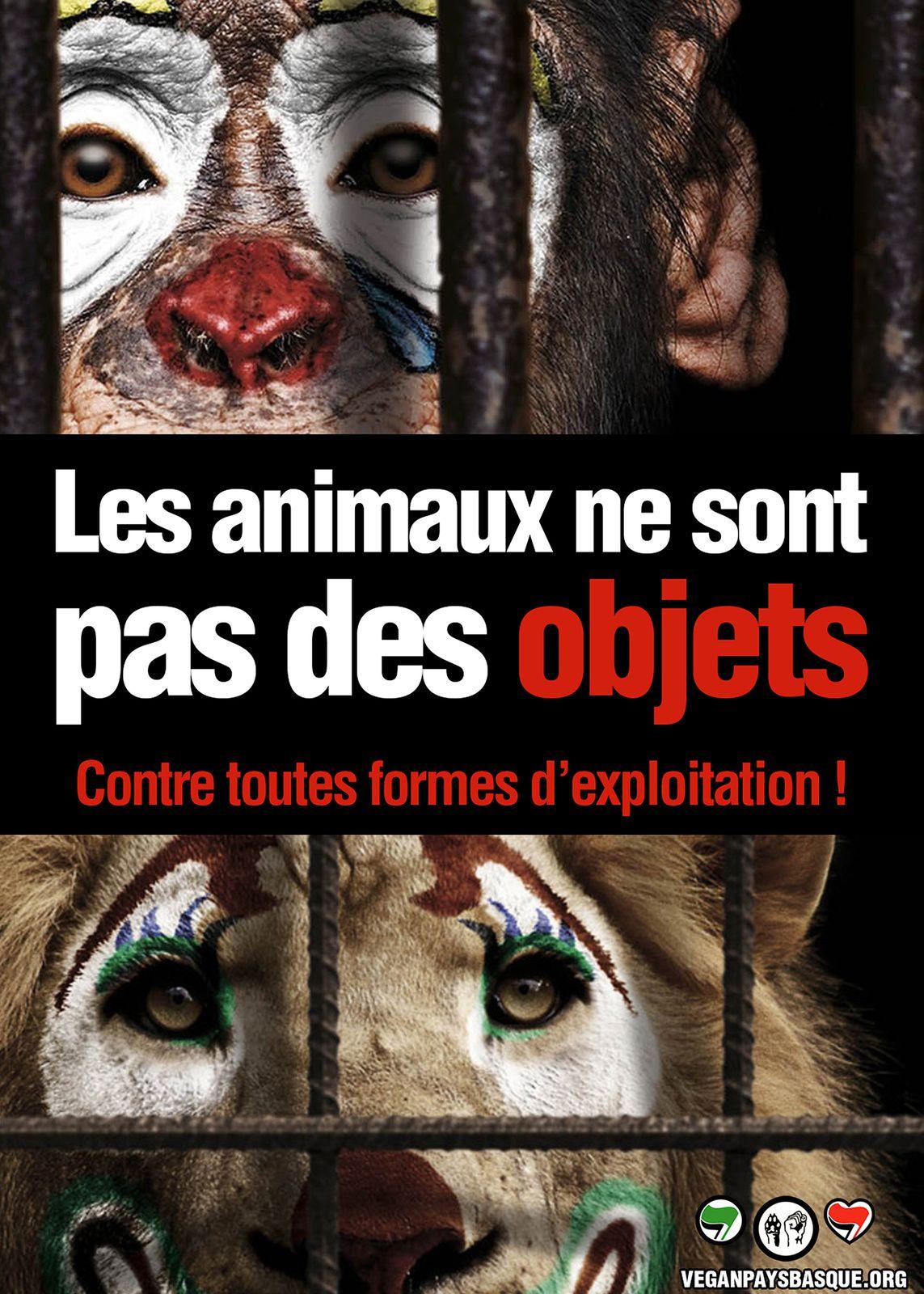 Cirque sans animaux : Vierzon doit s'engager