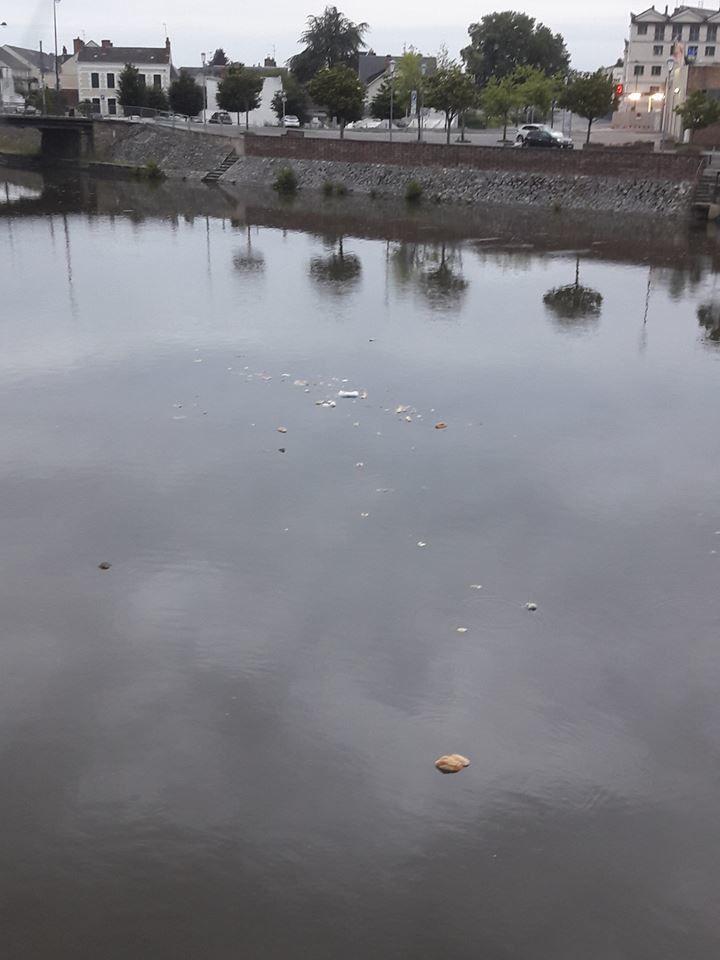 Il jette le pain aux canards du canal mais avec le sac plastique !
