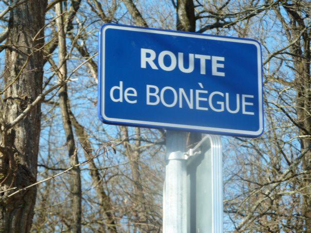 Même route de Bonègue... Désespérant