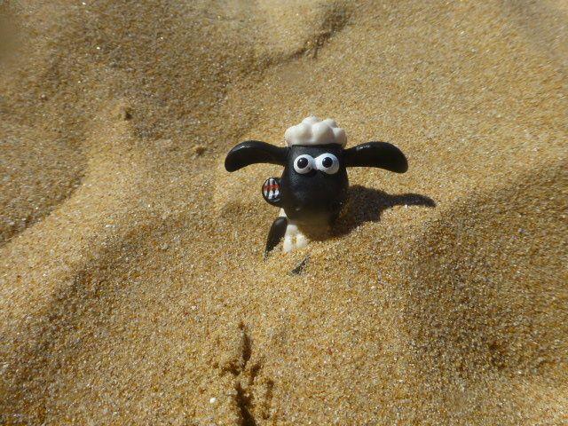 Quand Mouton debout n'était pas confiné