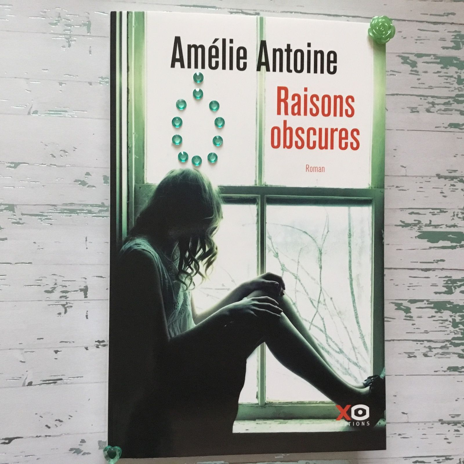 On a lu Raisons obscures d'Amélie Antoine