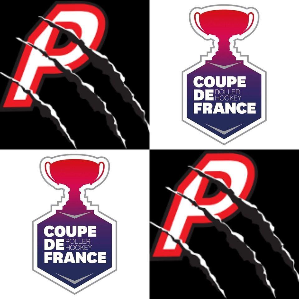 Coupe de France : les Prédateurs contre les Lions de Bordeaux