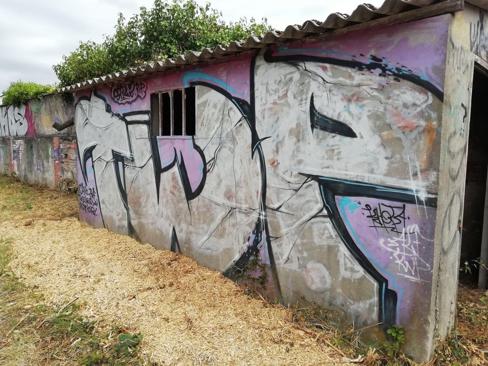 La gare d'eau des Forges : galerie de graffitis à ciel ouvert