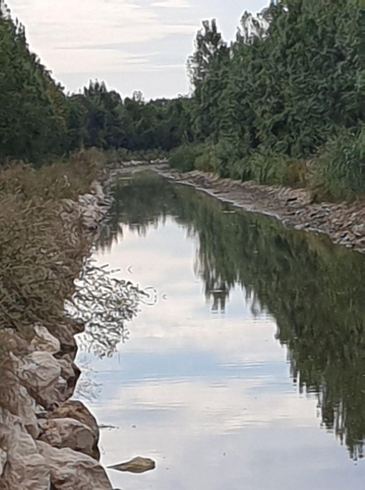 De Mehun à Vierzon par le canal de Berry, images d'un lecteur