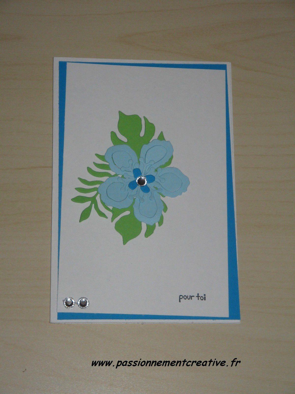 Cartes Fleurs (5)