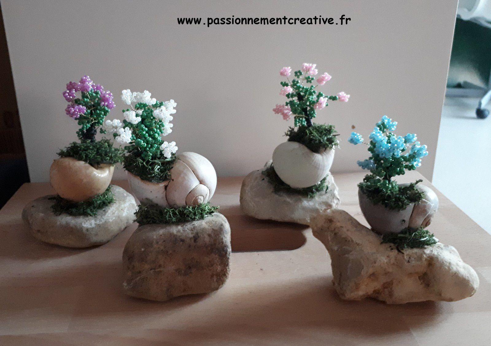 Des fleurs dans un escargot