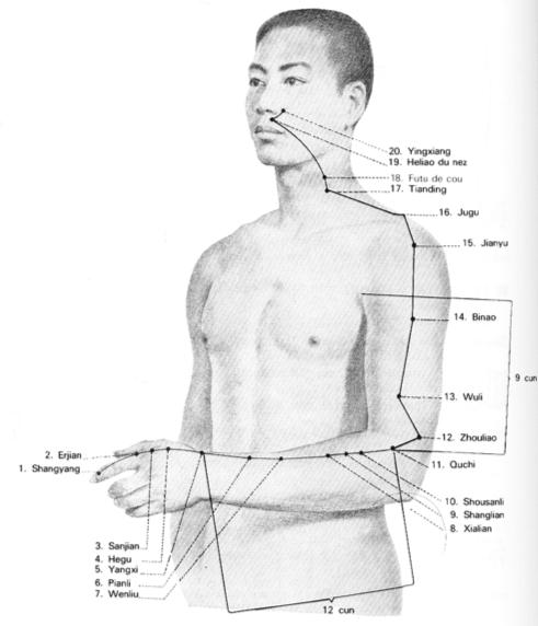 La relation entre le DIM MAK et le karate d'OKINAWA