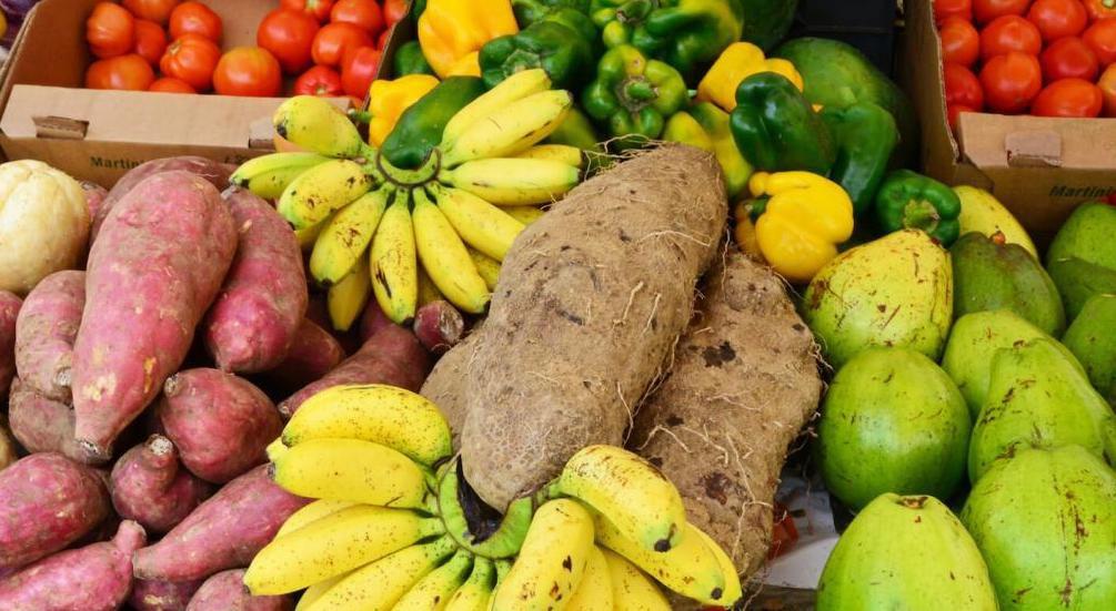 Quand la Martinique cultivera son autonomie…