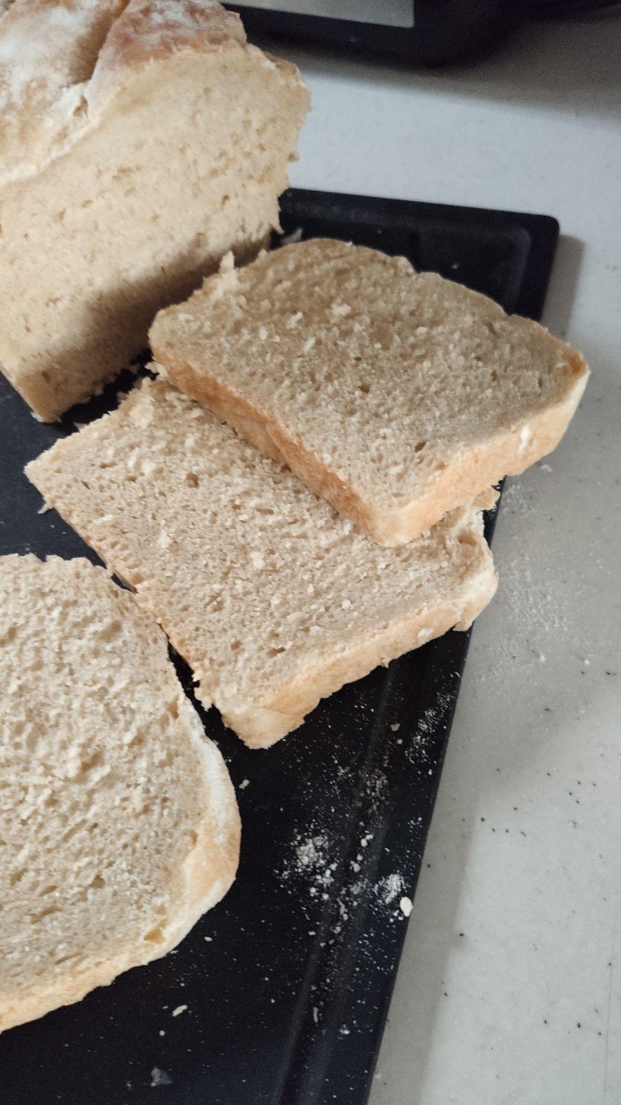 Petits pains cocotte sans gluten campagne et pain blanc au Companion .