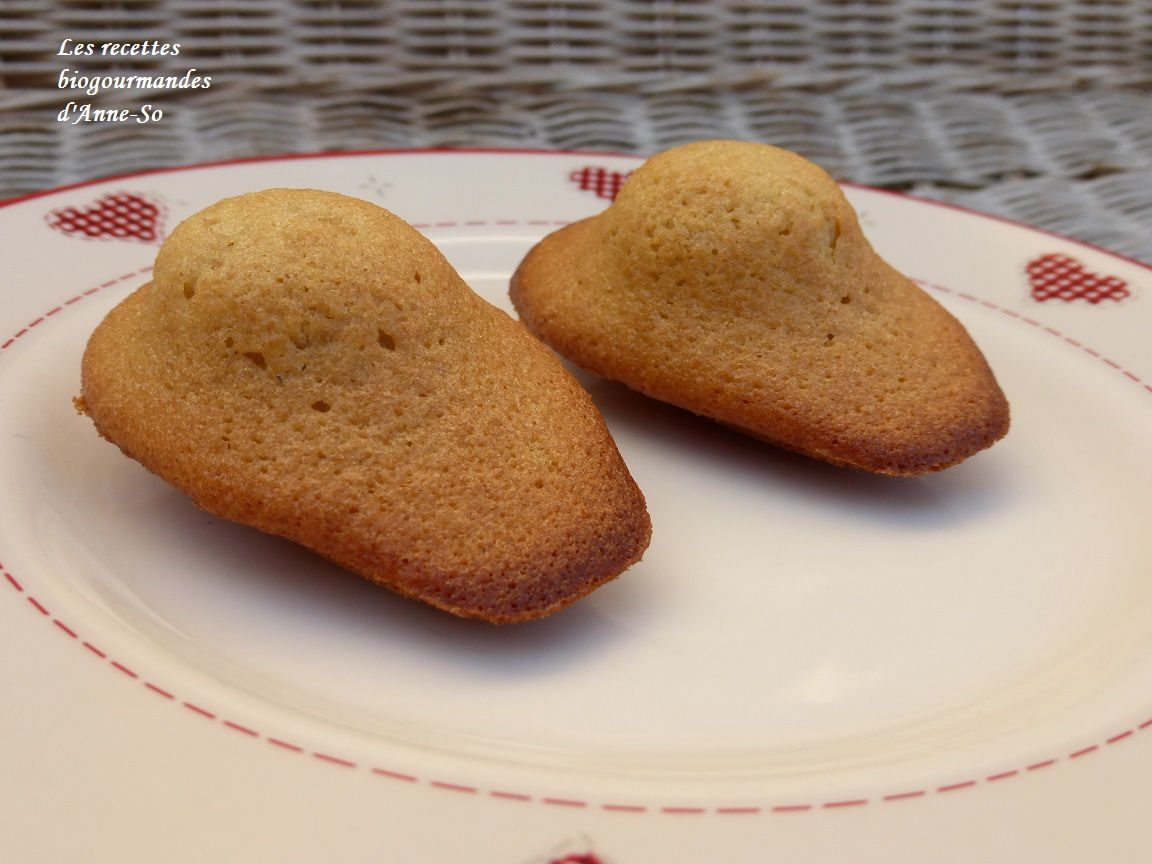 MADELEINES D'EPEAUTRE AU MIEL EXTRA MOELLEUSES