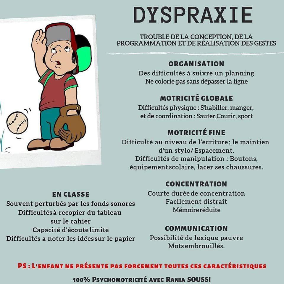 La dyspraxie - Schéma explicatif