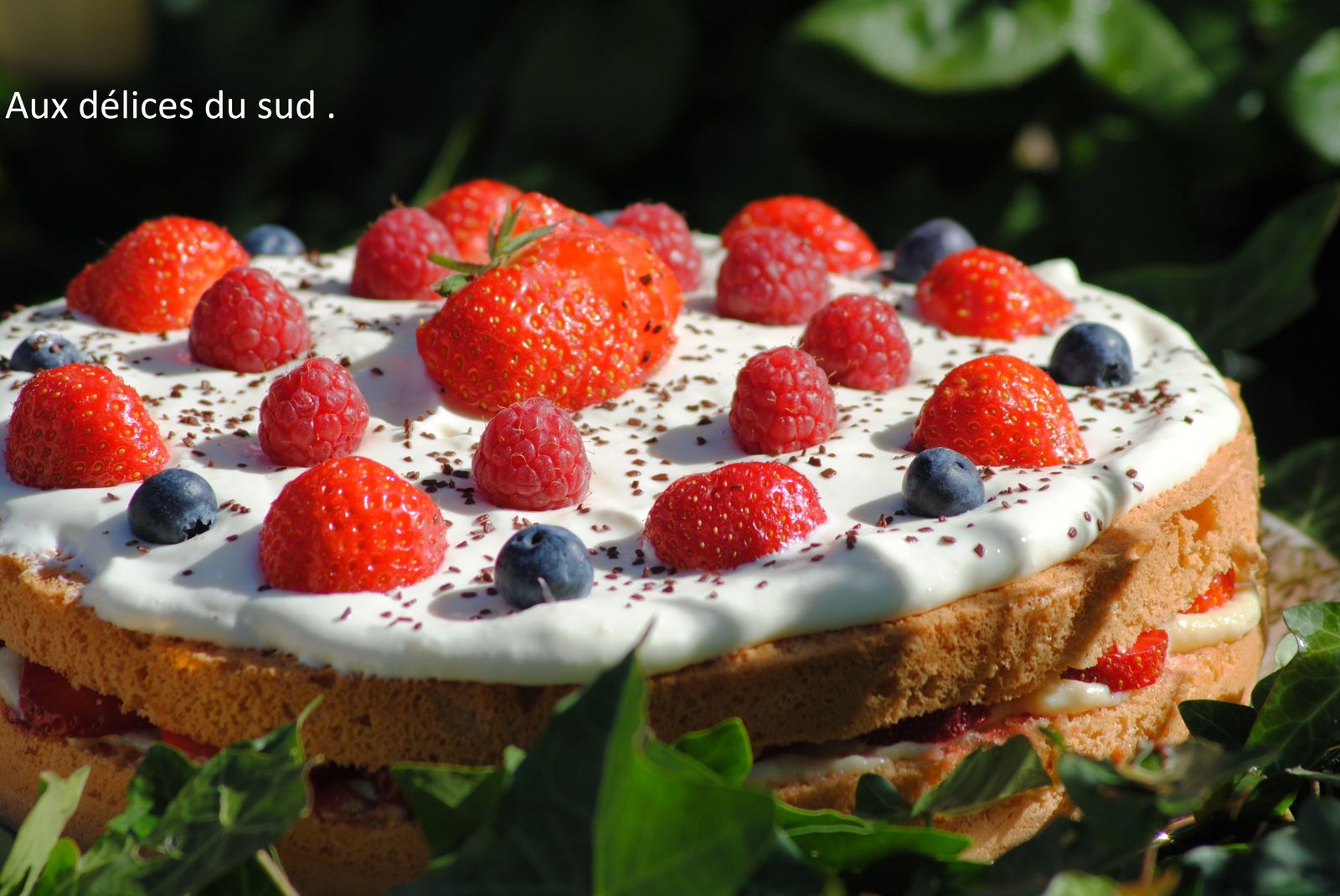 Gâteau aux fruits rouges pour julie .