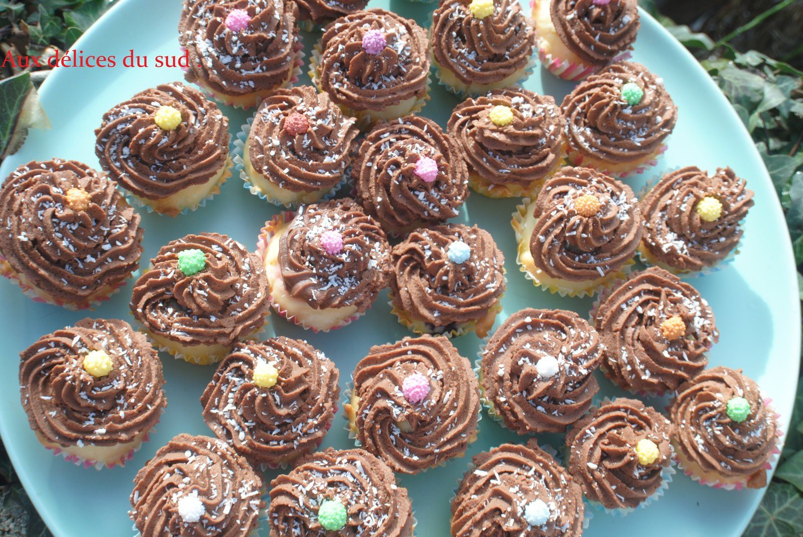 Mini-cupcakes choco-coco-myrtilles .
