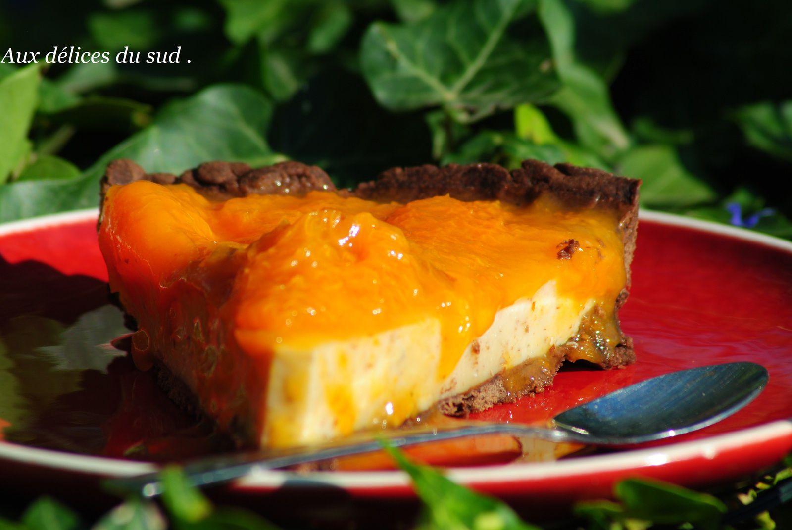 Tarte aux  abricots -choco - noisettes .