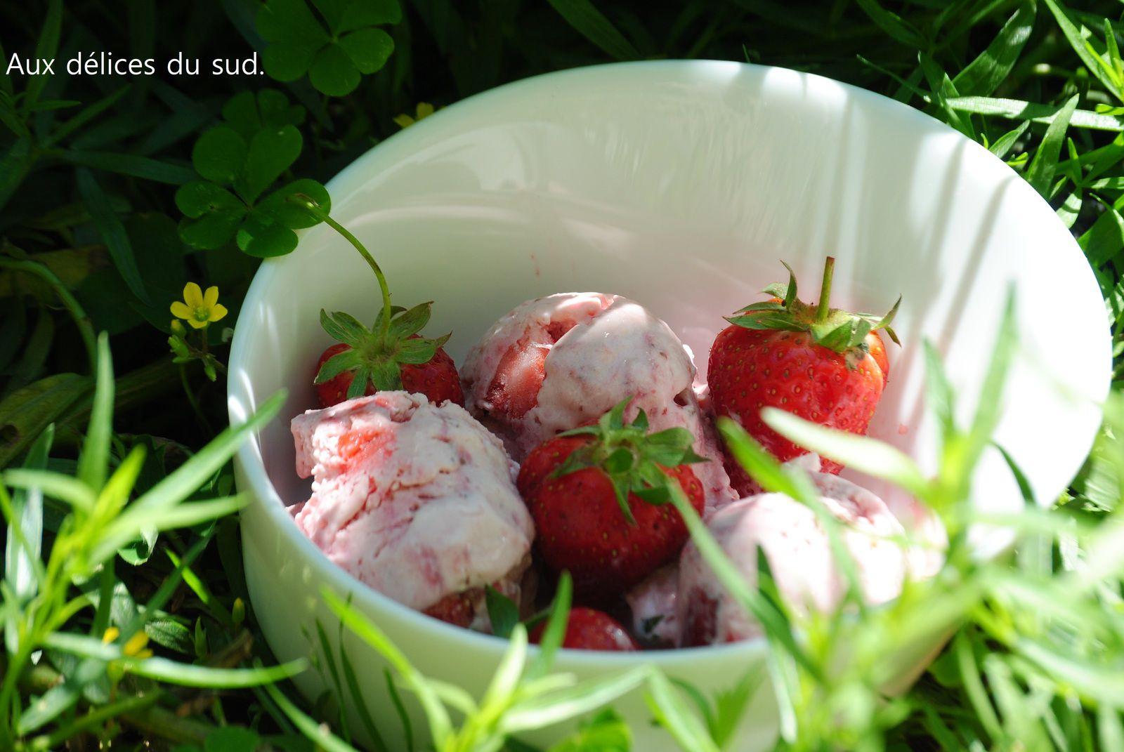 Crème glacée aux fraises ,basilic .