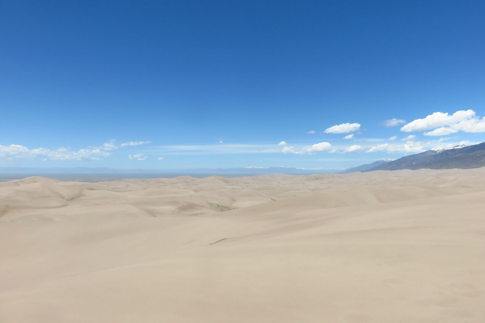 Jour 5 - ALAMOSA - Great Sand Dunes
